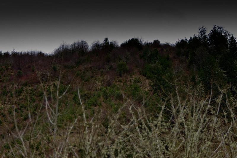 20110313.jhmt.17 Miles_Row River-75.jpg