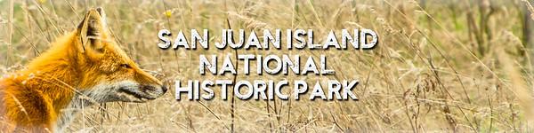 San Juan Island National Historic Park Gallery