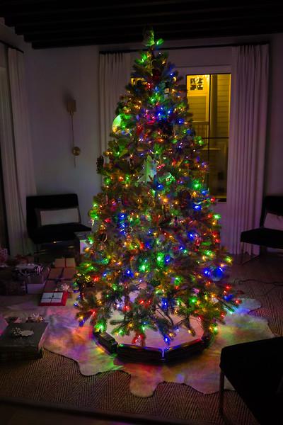 Christmas 2017-1080013.jpg