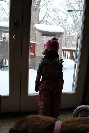 Snowfall - January 2011
