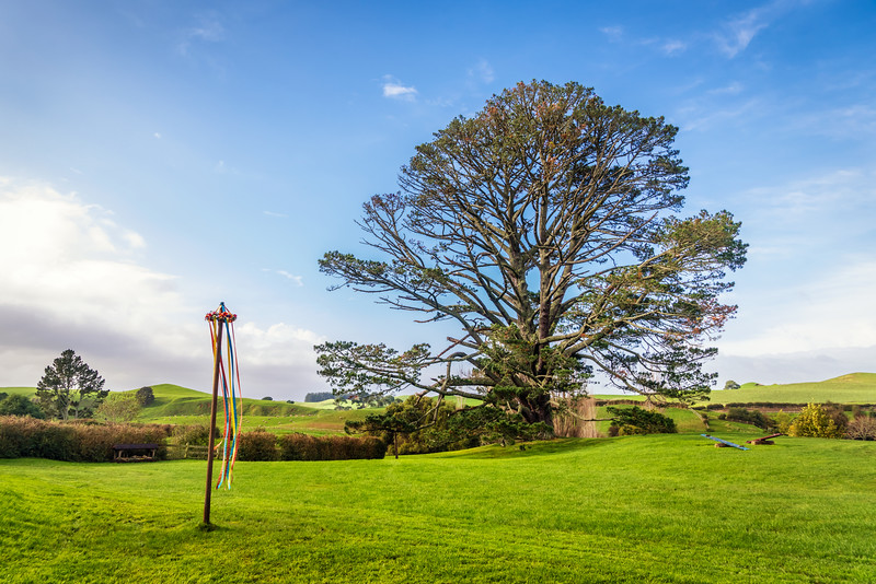 party-tree-hobbiton-may-2016.jpg