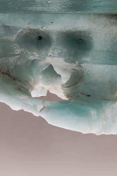 Alien In Ice