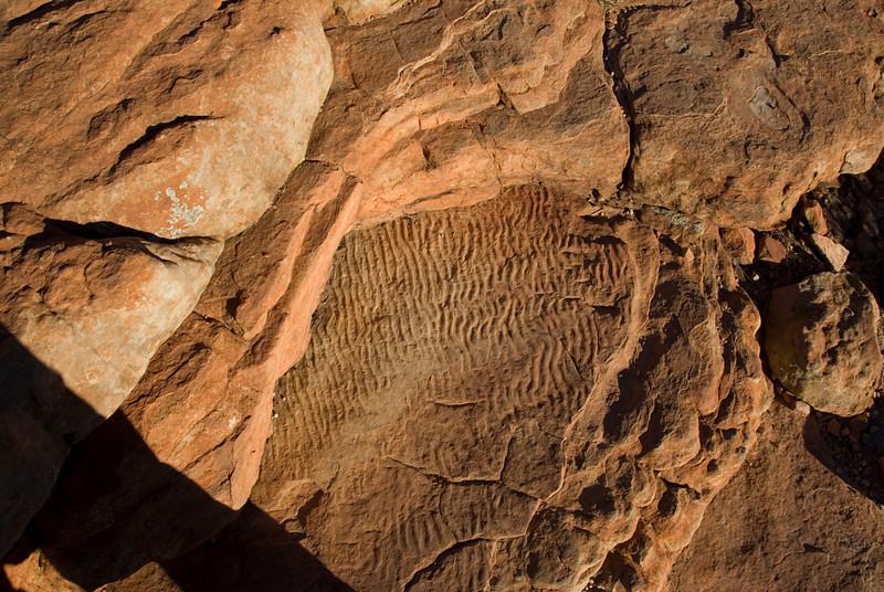 Ripples in Rock, Kings Canyon - Northern Territory, Australia