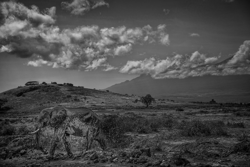 Kenya-102013-1954.jpg