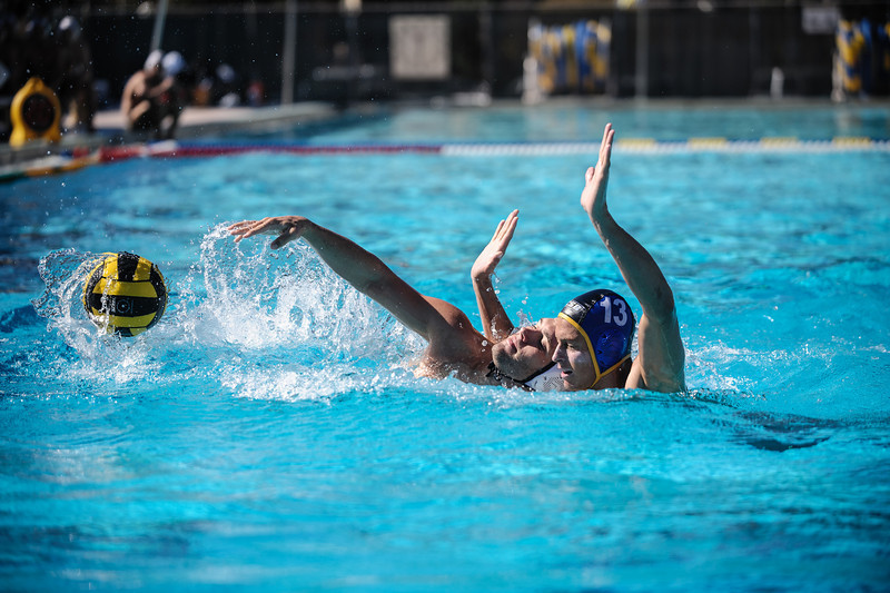 Mens Waterpolo
