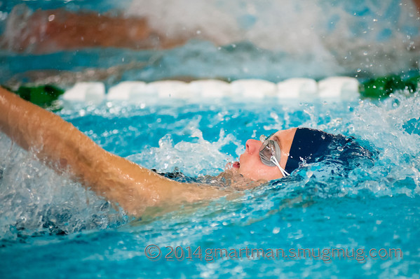 2014 NWOC Swimming District Meet