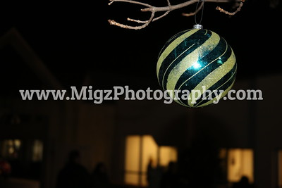 2013 Lights of Love