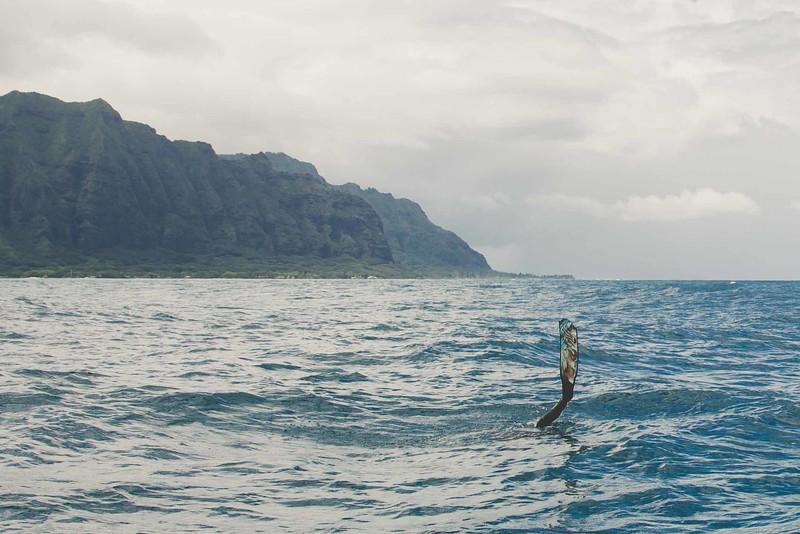 Oahu-1-7.jpeg
