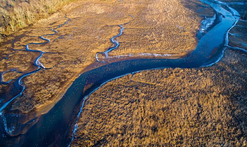 River-0008.jpg