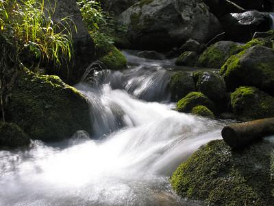 Basin Creek Trail (9.4.05)