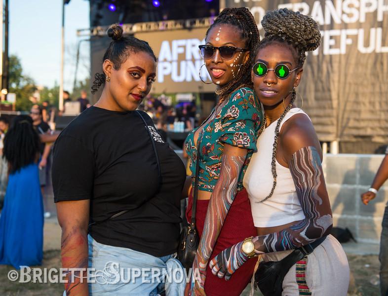 AfroPunk-August-2016-large-100.jpg