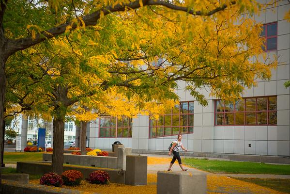 14211 Fall Exteriors, South Campus