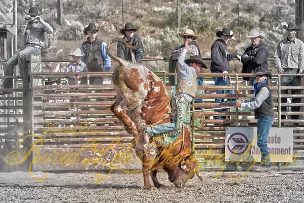 2011 Arlington Jackpot Rodeo