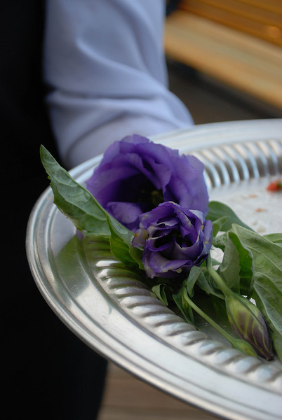 Wedding (42 of 65).jpg