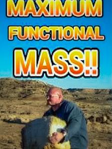 Maximum Functional Mass
