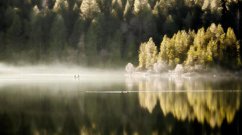 paradise lake, ca