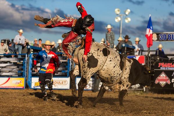 2013 Langham PBR Rodeo