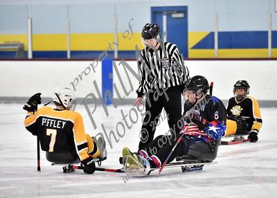 Delaware Snipers Sled Hockey