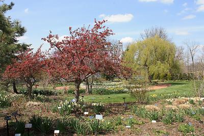 Powell Gardens-misc.