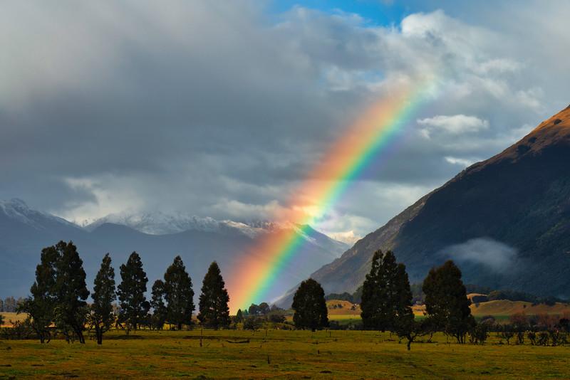 Rainbow Over Paradise