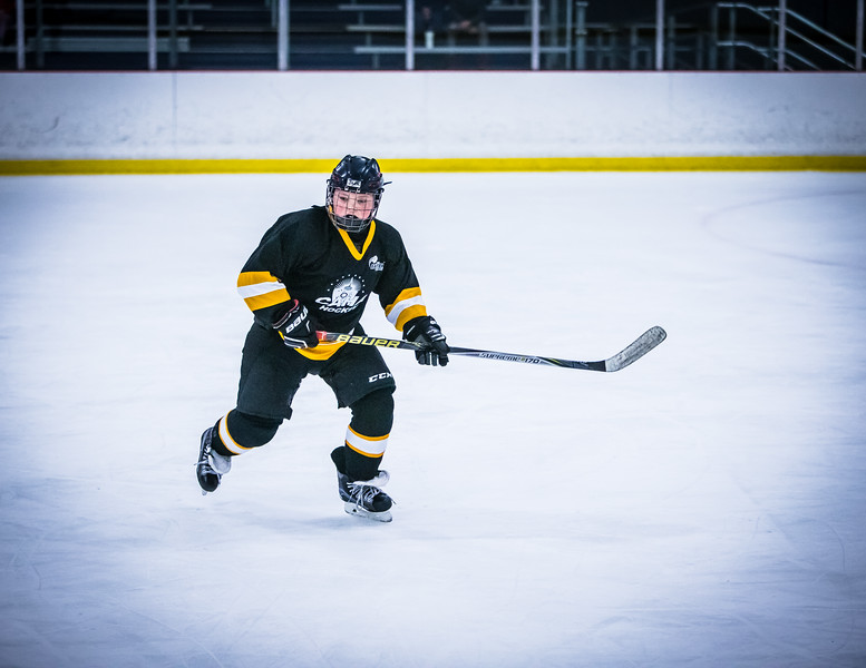 Bruins2-448.jpg