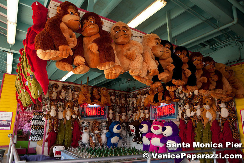 VenicePaparazzi-60.jpg