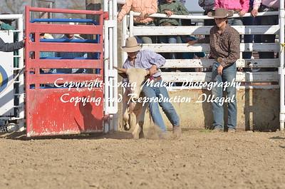 Chute Dogging 05-02-15
