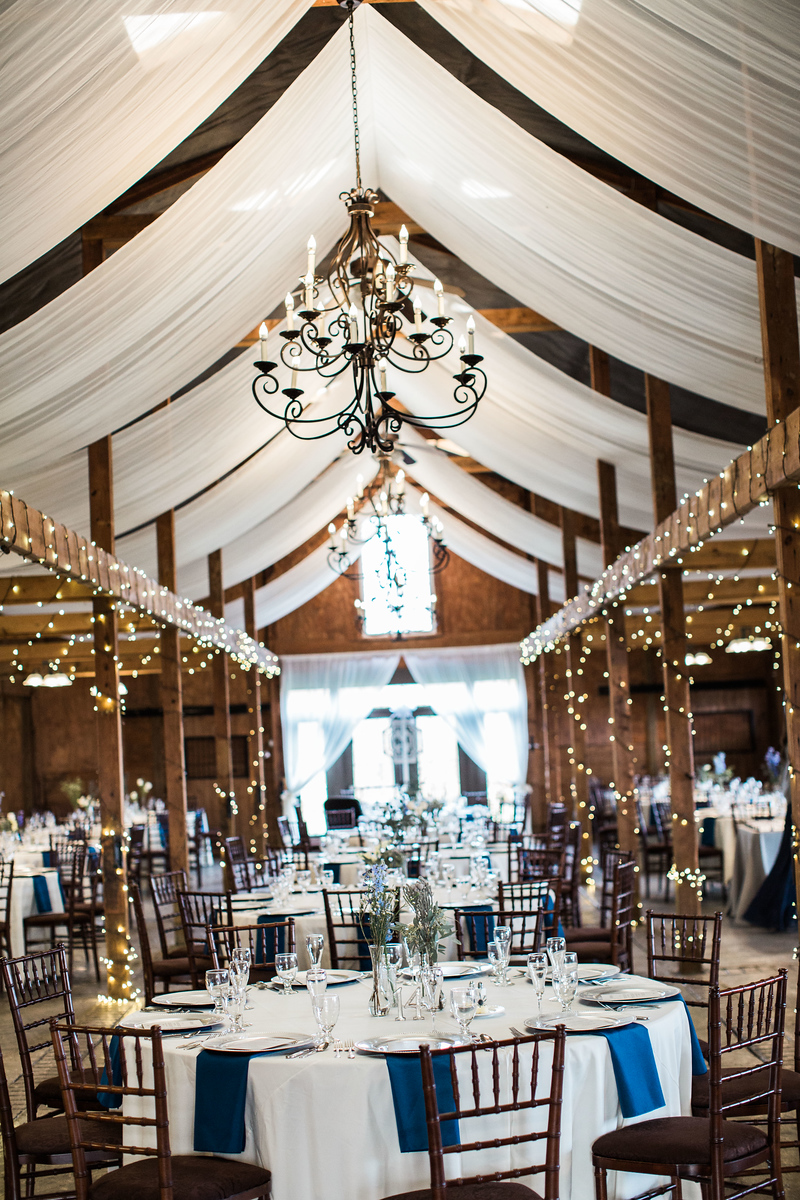 Bluemont Vineyards wedding photos with navy and silver accents. Photos by the best Washington DC wedding photographer Jalapeno Photography.
