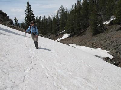 Yellowstone Day Hikes June 2011