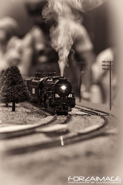 Trains - Ferrocarriles