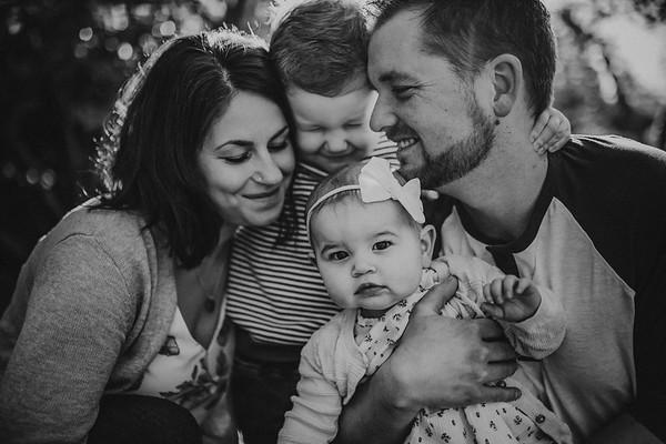 Vaniersel {Family} 2019