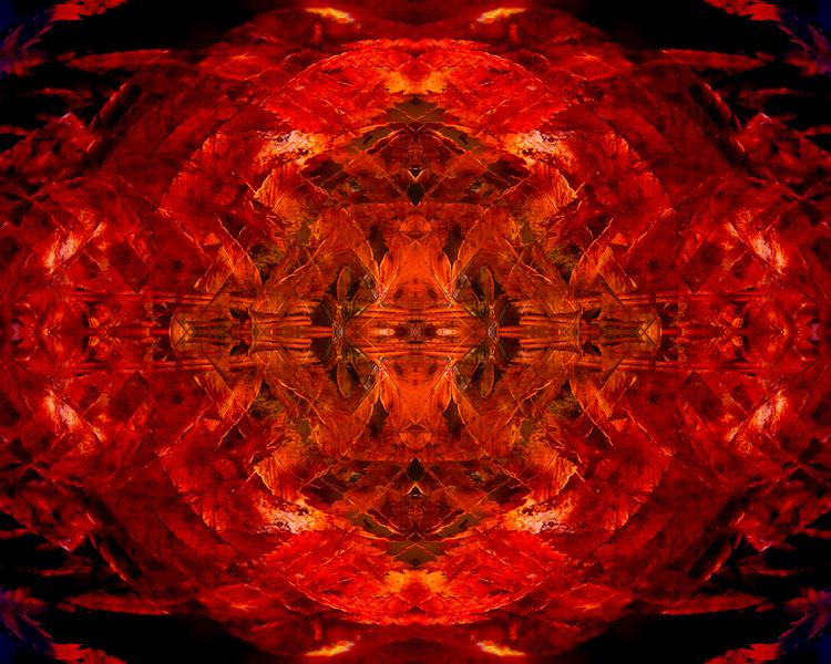 20210103-JAN_8614-mirror-1-3.jpg
