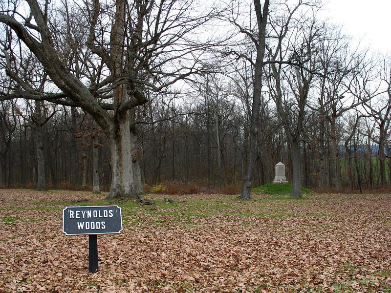 Gettysburg - Reynolds Woods (ca. 2006)