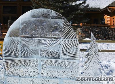 2012 Evergreen Lake Polar Plunge