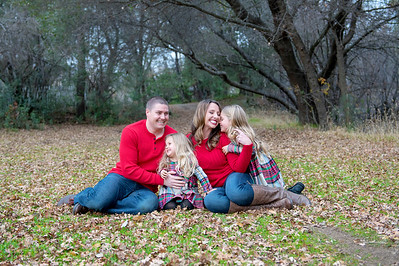 Stubblefield Holiday Photos - 2017