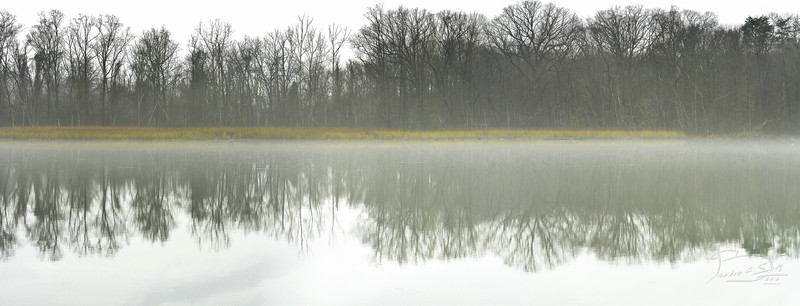 Stratford Landing Creek, Alexandria, Virginia