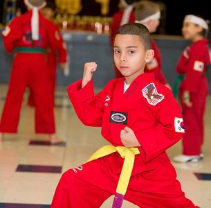 Taekwondo January 8, 2011