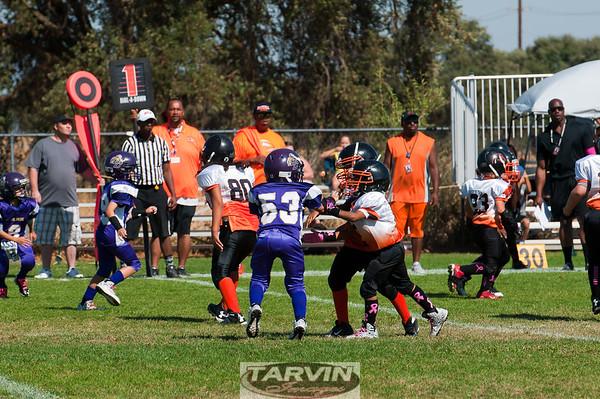 2015 U8 BCS vs FHF