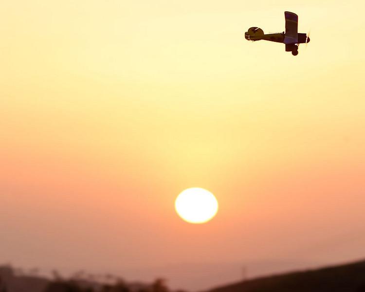 AlbatrosSunset10.jpg