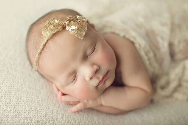 navy perry newborn