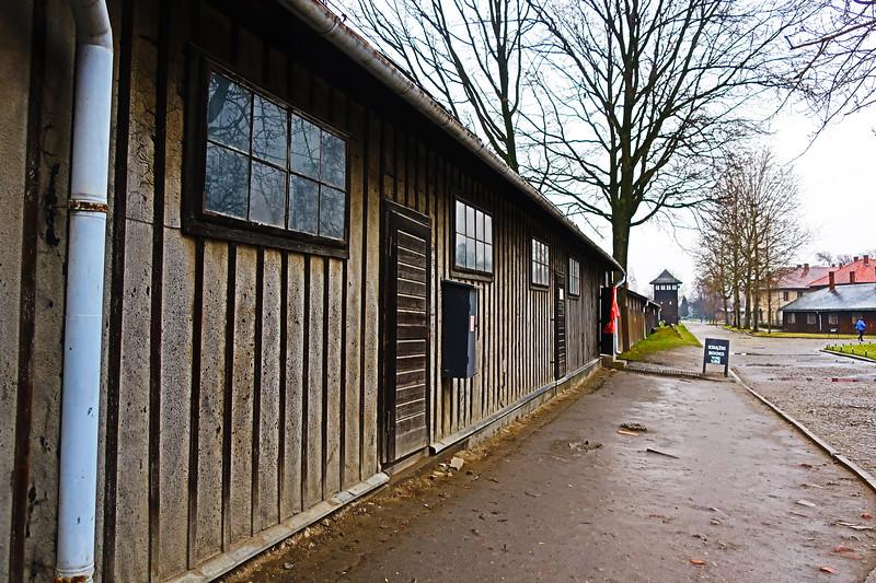 Auschwitz -Birkenau29.JPG