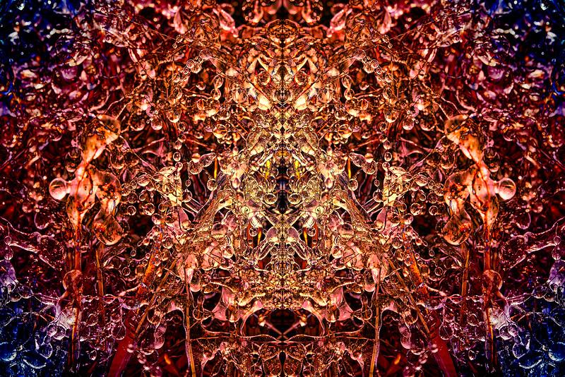 20201012-_DSC4637-Edit-Edit-mirror-1-2.jpg