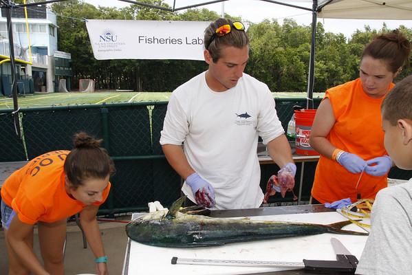 NOVA Fish Survey - REEF 2014