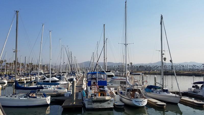 乘坐渡轮从文图拉港到圣克鲁斯岛|参观海峡群岛国家公园