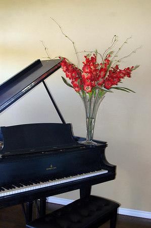 Floral Design by Vicki Cape