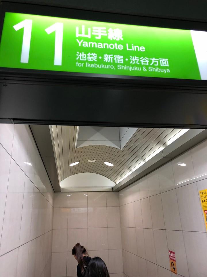 Getting from Narita to Shinjuku by Keisei Skyliner