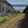 Ano Nuevo Beach Path
