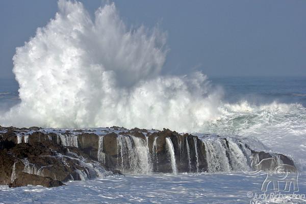 North Shore Waves 1-11-2010