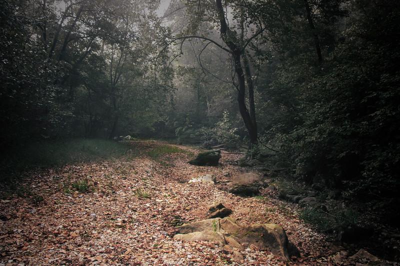9.29.18 - Tea Kettle Falls Trail:
