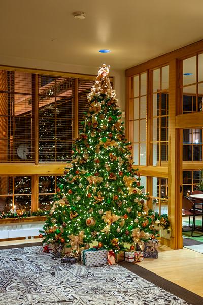 Noelker Hull Christmas Tree-5.jpg
